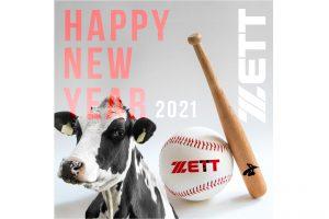 zett_02